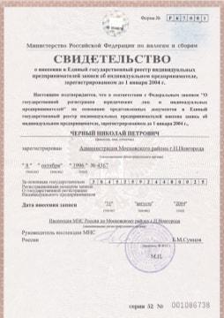 Свидетельство о внесении в ЕГРИП ИП